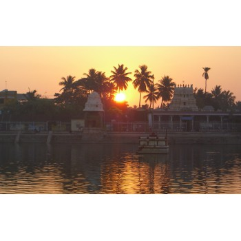 Palmleaf Library Journey (South India) 9 Days